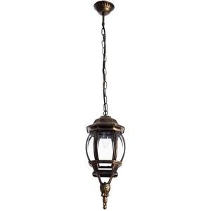 цена на Уличный подвесной светильник Arte Lamp A1045SO-1BN