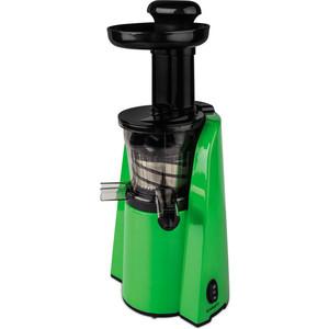 Соковыжималка Scarlett SC-JE50S36 зеленый/черный