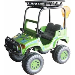 CHIEN TI Электромобиль Backyard Safari 4X4 - CT-888 4x4