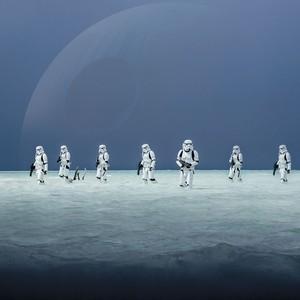 Фотообои Komar Disney Звездные войны: Пляж планеты Скариф 368х254 см бумажные (8-444)