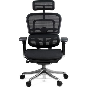 Кресло эргономичное Comfort Seating Group EHPE-AB-HAM (Д) KMD-31 ergohuman plus elite black