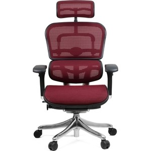 Кресло эргономичное Comfort Seating Group EHPE-AB-HAM (Д) KMD-37 ergohuman plus elite burgundy