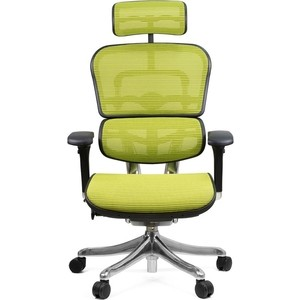 Кресло эргономичное Comfort Seating Group EHPE-AB-HAM (Д) KMD-34 ergohuman plus elite green