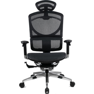 Кресло эргономичное GTChair SE-13D GT-12 I-See black (chromed frame) happy healthy ajay stuart j murphy s i see i learn health and safety skills stuart j murphy s i see i learn series