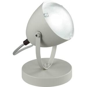 Настольная лампа Lumion 3669/1T