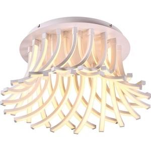 Потолочный светодиодный светильник Omnilux OML-44907-216