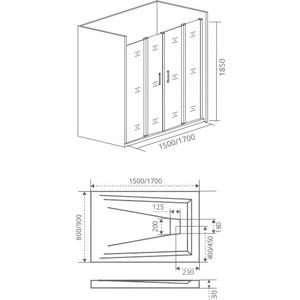 Душевая дверь Good Door Infinity 170 прозрачная, хром (Infinity WTW-TD-170-C-CH)