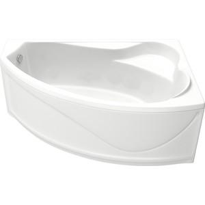 Акриловая ванна BAS Николь правая 170x100 с каркасом, слив-перелив, фронтальная панель (В 00028, Э 00028)