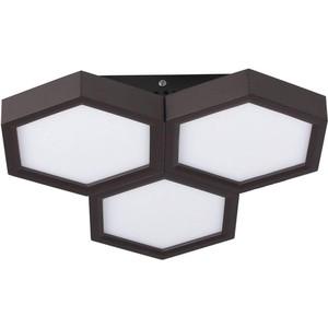 Потолочный светодиодный светильник Favourite 2142-3C
