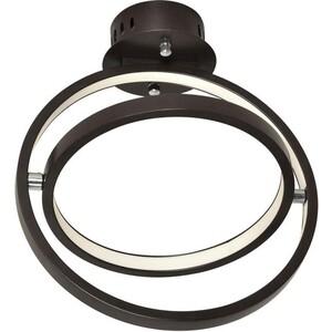Потолочный светодиодный светильник Favourite 2119-2U