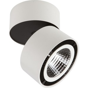 Потолочный светодиодный светильник Lightstar 213850