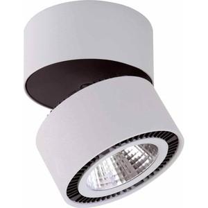Потолочный светодиодный светильник Lightstar 213859