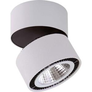 Потолочный светодиодный светильник Lightstar 214839