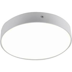 Потолочный светодиодный светильник Favourite 2065-30C цена