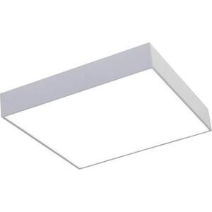 Потолочный светодиодный светильник Favourite 2066-30C
