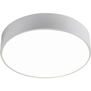 цена на Потолочный светодиодный светильник Favourite 2065-24C