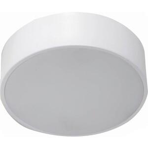 Потолочный светодиодный светильник Favourite 2065-16C цена