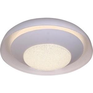 Потолочный светодиодный светильник с пультом Mantra 5927