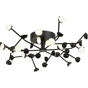 Потолочный светодиодный светильник Nowodvorski 6422