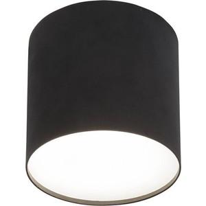цена на Потолочный светильник Nowodvorski 6526
