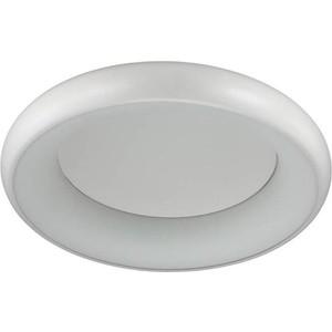 Потолочный светодиодный светильник Odeon 4063/50CL