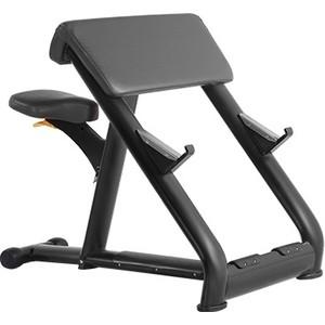 Скамья Скотта Bronze Gym H-040A (черный)