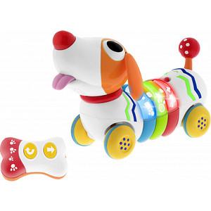 Игрушка музыкальная Chicco собачка REMI (9336000000)