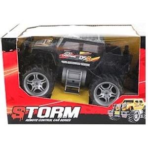 Радиоуправляемый внедорожник Shenzhen Toys Storm, арт. FL9988 - М44307