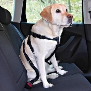 Ремень безопасности TRIXIE автомобильный для собак 30-70см (1290)