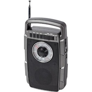 Радиоприемник MAX MR-322 silver