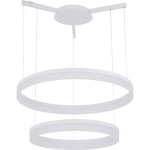 Подвесной светодиодный светильник Artelamp A2504SP-2WH