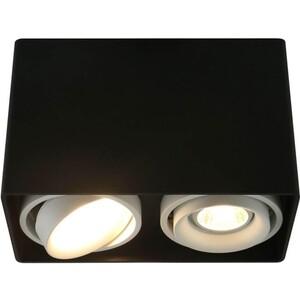 Потолочный светильник Artelamp A5655PL-2BK