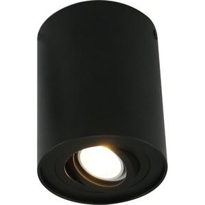 Потолочный светильник Artelamp A5644PL-1BK