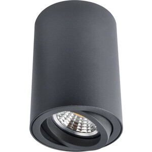 Потолочный светильник Artelamp A1560PL-1BK