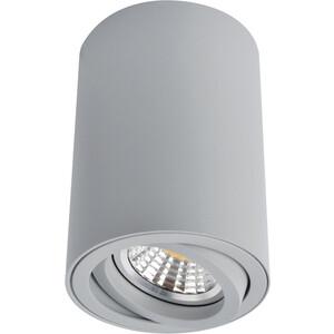 Потолочный светильник Artelamp A1560PL-1GY