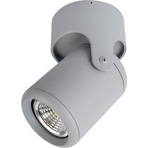 Спот Artelamp A3316PL-1GY