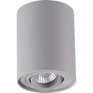 Потолочный светильник Odeon 3831/1C