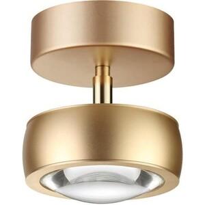 Потолочный светодиодный светильник Odeon 3874/10CL