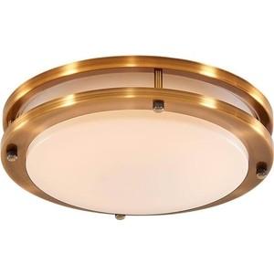 Потолочный светодиодной светильник Citilux CL709153