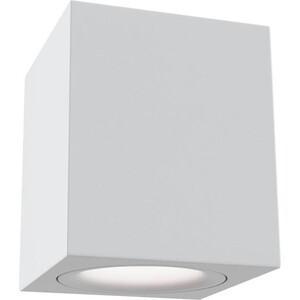 Потолочный светильник Maytoni C013CL-01W все цены