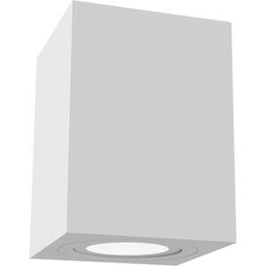 цена на Потолочный светильник Maytoni C017CL-01W
