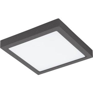 Уличный потолочный светильник Eglo 96495 цена
