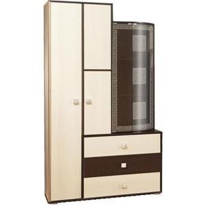 Шкаф комбинированный Олимп 06.72 Венера венге/дуб линдберг/профиль венге/стекло тонированное гнутое с пескоструем