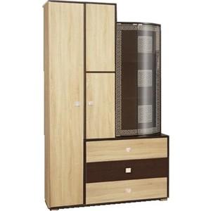 Шкаф комбинированный Олимп 21.72 Венера венге/дуб сонома/профиль венге/стекло тонированное гнутое с пескоструем