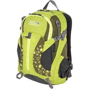Рюкзак дорожный Polar П1552-09 зеленый малый женский