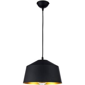 Подвесной светильник Arti Lampadari Rufo E 1.3.P1 B