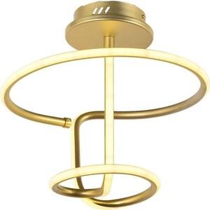Потолочный светодиодный светильник Arti Lampadari Angelo L 1.2.35.05 G