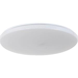 Потолочный светодиодный светильник Arti Lampadari Bianco E 1.13.49 W