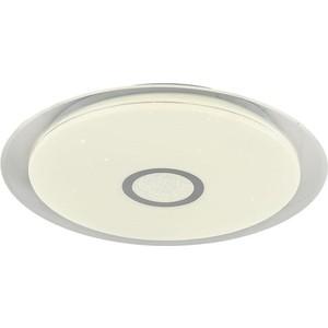 Потолочный светодиодный светильник F-Promo 2318-4C
