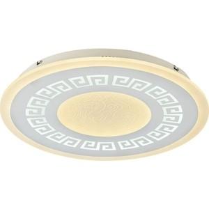 Потолочный светодиодный светильник F-Promo 2273-5C